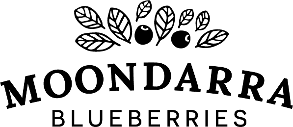 Moondarra Blueberries